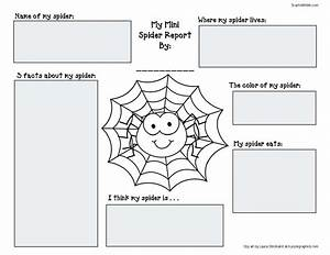 Spider Activities And Games That Teach