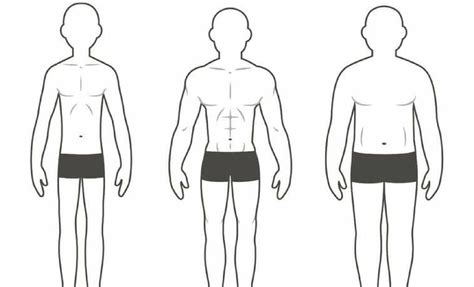 The Three Different Body Types And How They Affect Your