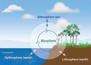 A Data Trust-Sphere Analogous To A Life Biosphere : Or How ...
