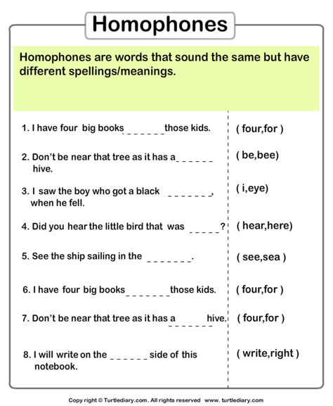 identify the homophone worksheet turtle diary