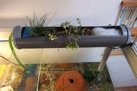 gouttiere pour terrarium ou aquarium avec plante filtrante diy filtre naturel les