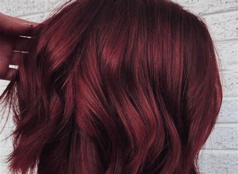 Mulled Wine Hair Color Trend Perfect For Holidays