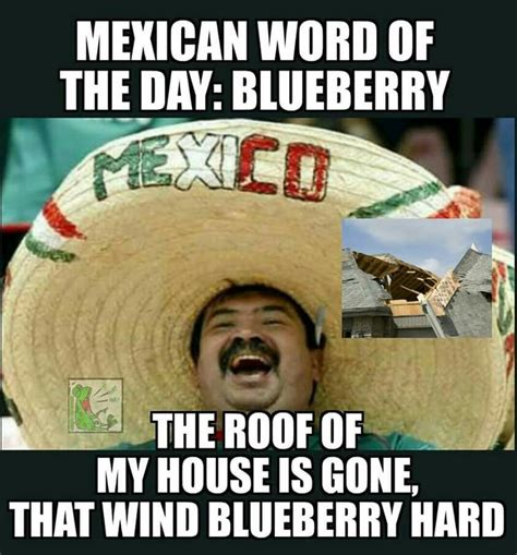 Mexican Word Of The Day Meme - 84 best mexican word of the day images on pinterest