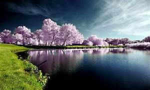 Wonderful nature - Nature's Seasons Photo (18760121) - Fanpop  Wonderful