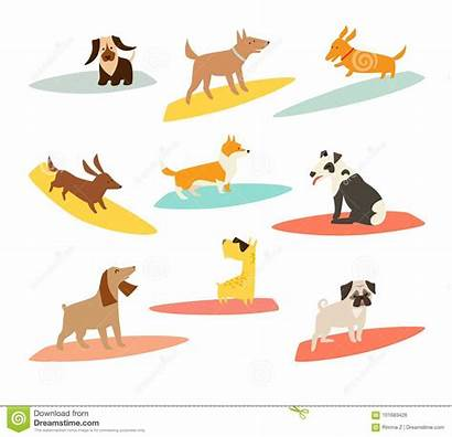 Dog Cartoon Vector Dogs Illustrations Beach Surfboard