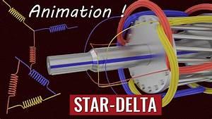 5 Star Deltum Starter Control Wiring Diagram
