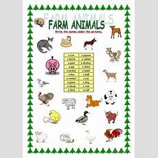 Farm Animals  English Esl Worksheets