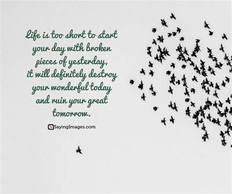 quotes   world  quotations famous