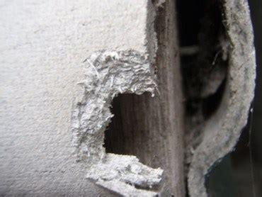 asbestos testing  sydney houses architecture  design