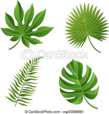 feuille tropicale vecteur illustration gradient