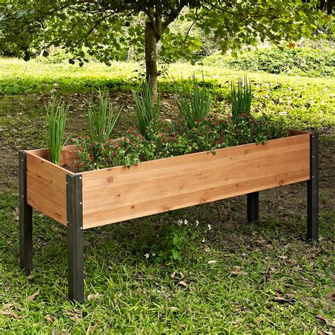 elevated garden bed coral coast bloomfield wood elevated garden bed 70l x