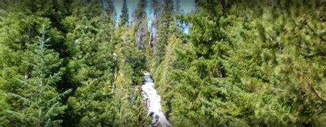 silver falls group campground   entiat wa