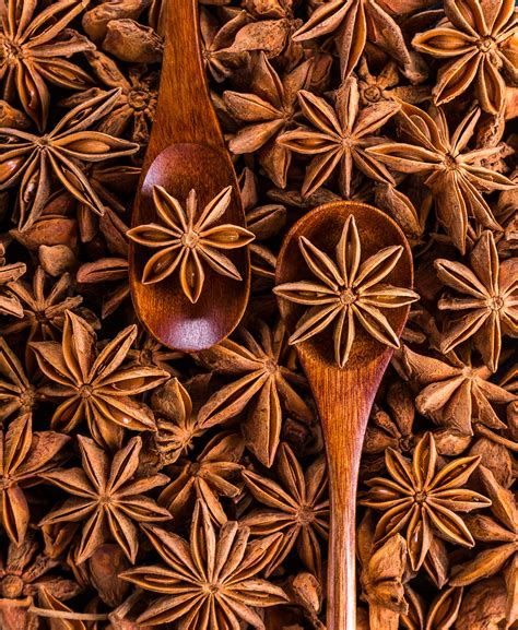 Directly Above Shot Of Dried Decoration Free Stock Photo