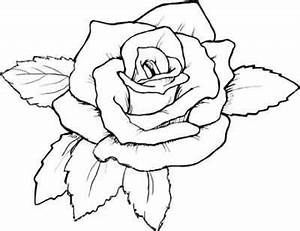 Realistic Rose Coloring Page - pretmic.com