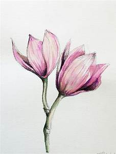 Realistic Drawings Of Flowers How To Draw An Open Rose ...