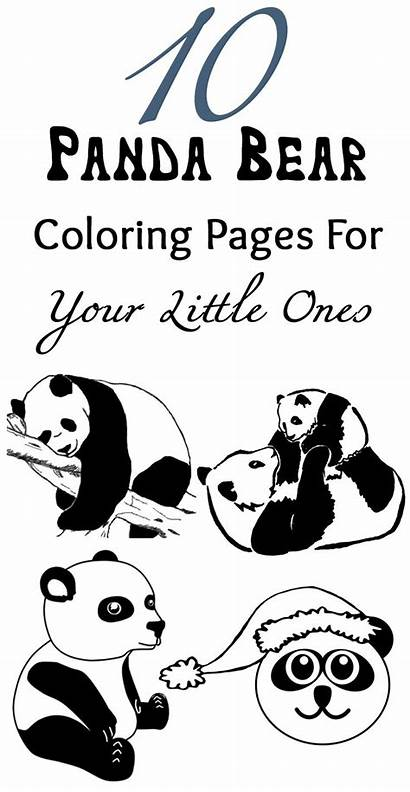 Panda Pages Coloring Bear Printable Birthday Template