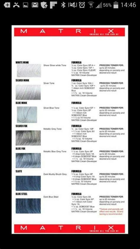 silver hair color formula 14 best images about hair color chart on curly