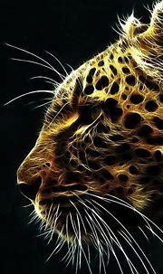 Animal iPhone Wallpaper | PixelsTalk.Net