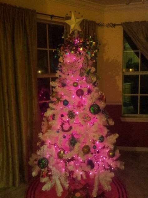 small pink tree with lights rainforest islands