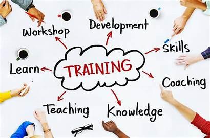 Training Development Education