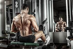 The Intermediate Bodybuilding Program