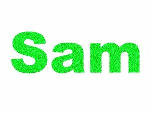 Sam Name Glitter Graphics, Pictures, & Images for Myspace ...
