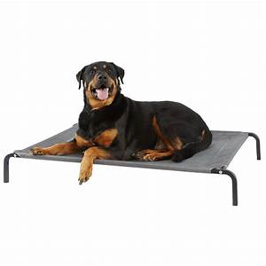 cooling dog bed find the best elevated dog bed to keep With best place to buy dog beds