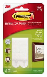 command 3m medium picture hanging strips shop hooks