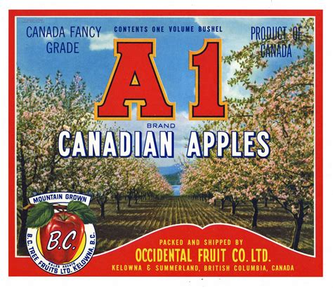 A1 Brand Vintage Canadian Apple Crate Label, red – thelabelman