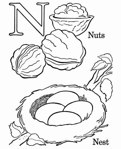 Coloring Pages Letters Letter Numbers Objects Nest