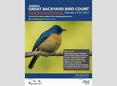 great american backyard bird count 28 images the great