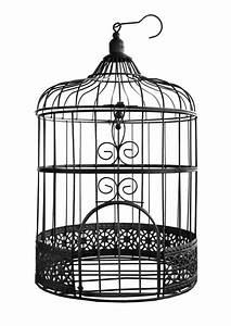 Cage Oiseau Deco : 1 cage a oiseaux noire 31cm ~ Teatrodelosmanantiales.com Idées de Décoration