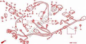 Wire Harness For Honda Transalp 600 1998   Honda Motorcycles  U0026 Atvs Genuine Spare Parts Catalog