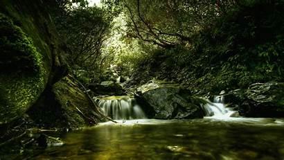 Screen Pc Desktop Background Nature
