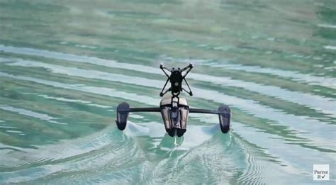 parrots  hydrofoil drone takes  water   duck