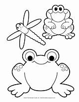 Pond Coloring Colouring Templates Frog Crafts Theeducationcenter sketch template