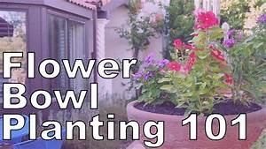 The Basics On How To Plant An Annual Color Bowl YouTube
