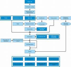 Flowchart Of Milk Processing