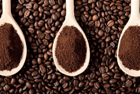 3 Fascinating and Economical Ways to Reuse Coffee Grounds