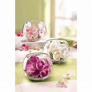 Orchideen Im Glas Dekorieren : deko orchidee im glas 3er set jetzt bei ~ Watch28wear.com Haus und Dekorationen