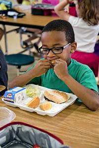 Free Picture  Boy Eating  Food  Sandwich  Fresh Salad  Milk