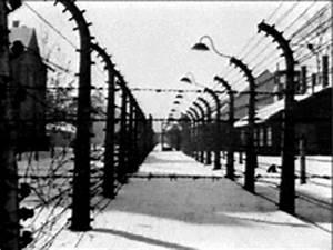 HistoryWiz: The Holocaust