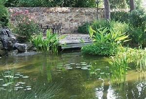 Plantes Vivaces Autour D Un Bassin : construire un bassin aquatique de la moine ~ Melissatoandfro.com Idées de Décoration