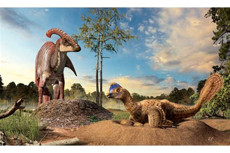 How Did Dinosaurs Build Their Nests? Csmonitorcom