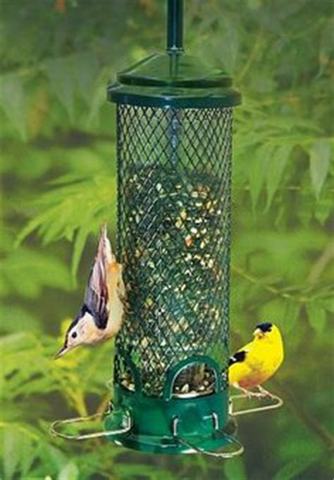 1000 images about bird feeders pidgeon proof on