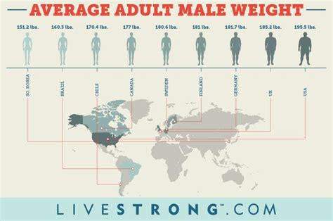 what is the average height and weight