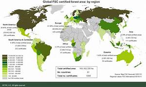 FSC mulls controversial motion to certify plantations ...