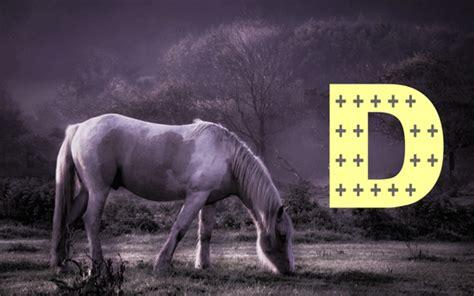 pc horse novembre  la vitamine