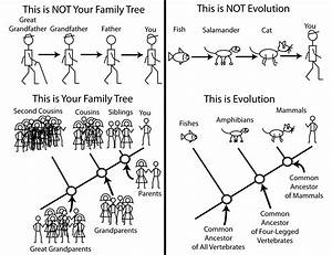 this is your life template - evolution is a theory and that s a good thing the
