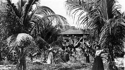 Coconut Grove History Bahamian Early Bahamians